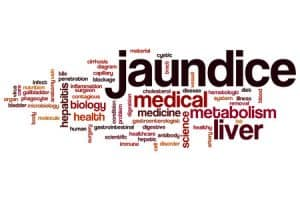 Indian diet plan for jaundice what to eat in jaundice forumfinder Images
