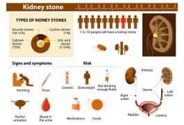 Indian Diet Plan for Kidney Stones ( diet for renal Calculi )
