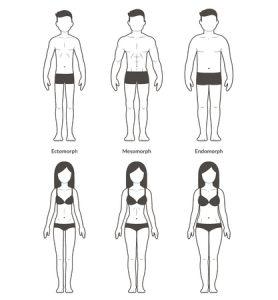 Indian Diet Plan For Ectomorph, Mesomorph and Endomorph