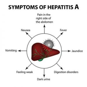 Indian Diet Plan For Hepatitis A, B, C, D, E1