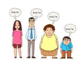 Indian Diet Plan to Decrease Body Fat Percentage
