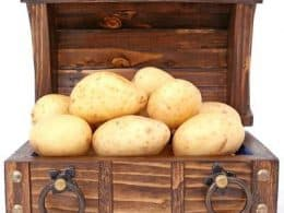 Indian version of potato diet for weight loss