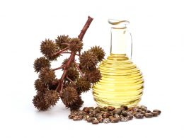 Coconut Oil Vs Castor Oil ( Which hair oil is best for Indian Hair? )