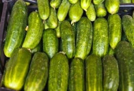 Benefits of Cucumber on Skin, Hair and Health