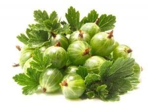 health benefits of amla gooseberry 6